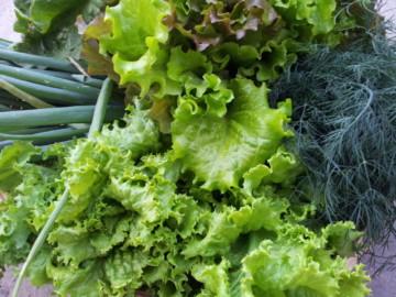 Какие можно есть овощи и фрукты при панкреатите?