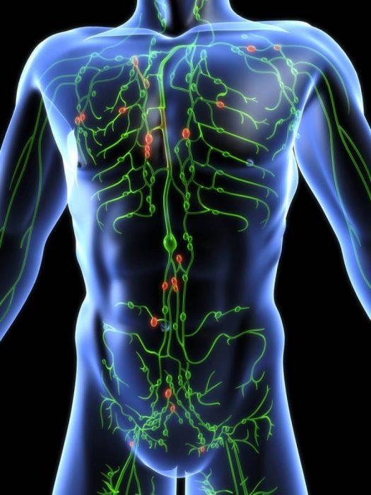 нарушение лимфотока в организме