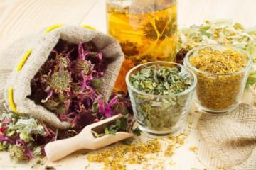 Лечение поджелудочной железы с помощью трав