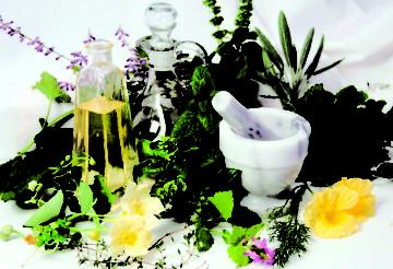Лечение панкреатита травами: рецепты настоев и отваров