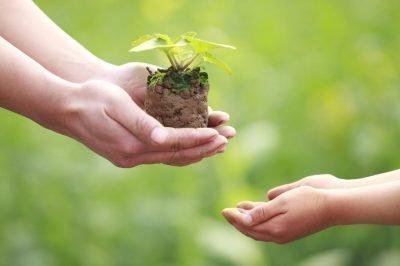 щедрость души