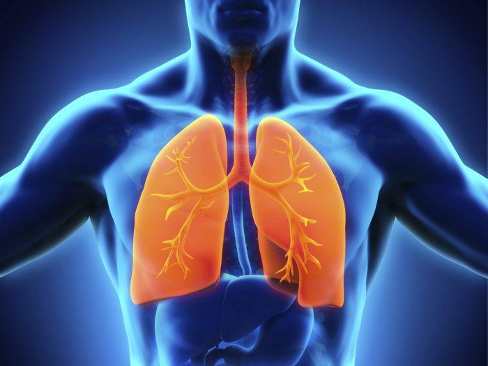 терапия дыхательной системы