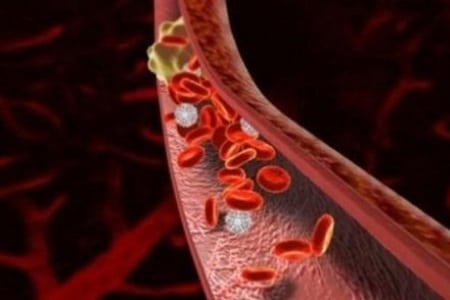 микроциркуляция крови