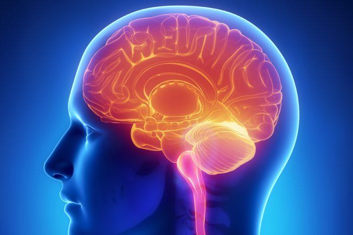 снижение функций головного мозга
